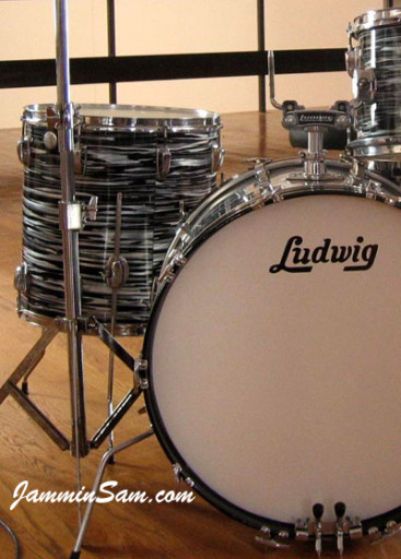 Photo of Damjan Dasic's Ludwig drums with Retro Black Oyster Pearl (3)